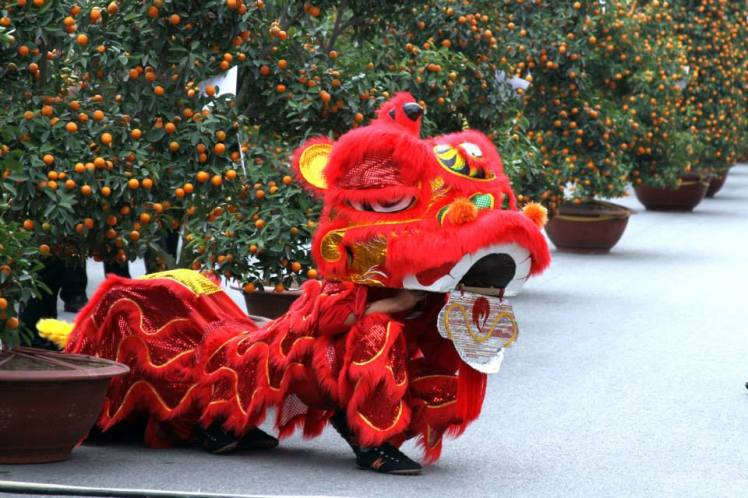 Visitting Vietnam during Tet: Lion dance to welcome a new year