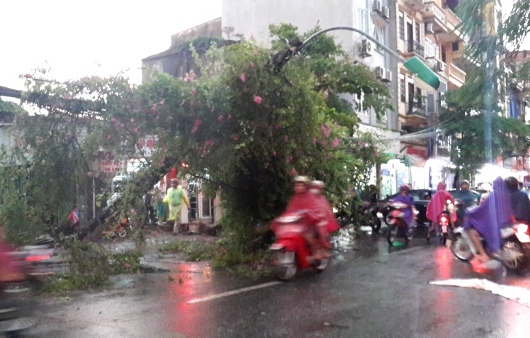 hanoi storm aftermath - life in hanoi