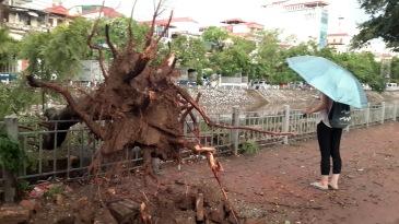 Hanoi storm - expat life in hanoi
